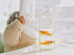 可爱多的鱼