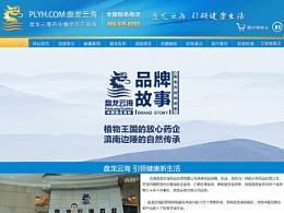 盘龙云海药业 品牌故事 专题页设计 程振良/vincent设计工作室