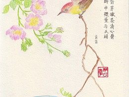 每天送自己一束花——蔷薇:细细闻来,有风的味道!