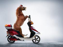 逗比马骑电动车