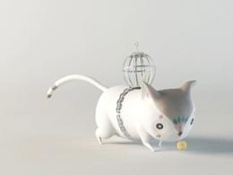 猫猫玩儿球球