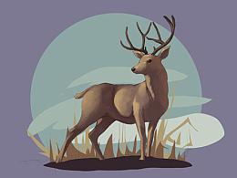 保护动物主题插画