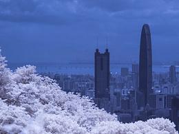 假如深圳下雪了