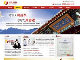 企业管理咨询网站页面