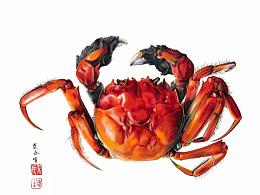 两幅手绘螃蟹