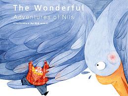《尼尔斯骑鹅旅行记》插画配图