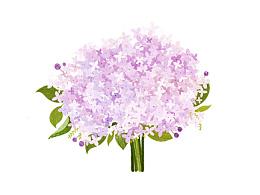 每天送自己一束花~~~