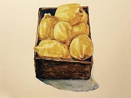 静物写生-柠檬