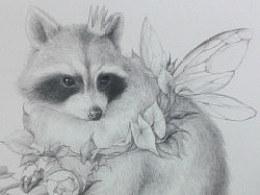 《小果的本 森de精灵——示爱的浣熊(过程) 》