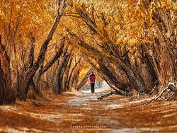 帕米尔高原的秋天