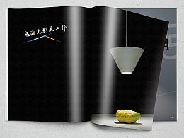 2014佛山照明股份  产品摄影 排版