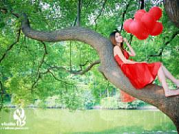 在树上唱歌,阿宝出品