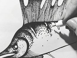 我要那个鱼 那个鱼…