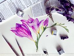 小花的水彩~曼妙撩人~