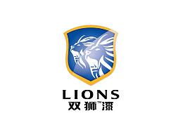 双狮 VI提案一