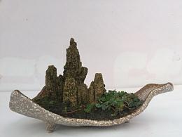 刚刚完成的微型山水盆景