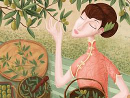 百雀羚新品橄榄油插画