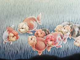 工笔兰寿金鱼