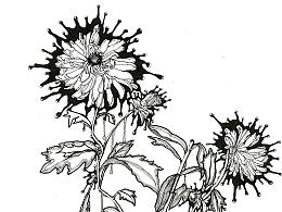 手绘|黑白装饰画(二)——花卉图片