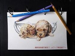 李小葱爱画画--《绘•灵》杂系一