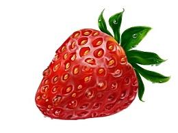 一个草莓引起的