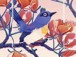 花&鸟 Part04