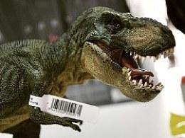 我和我的侏罗纪公园
