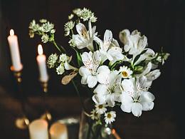 一组暗调六出花
