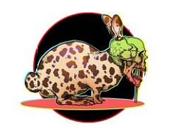 鹌鹑蛋豹纹骷髅兔
