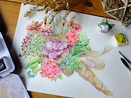 水彩手绘多肉植物/手捧花