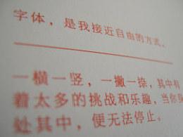 《我与我的字体-刘兵克2013年字体设计作品集》