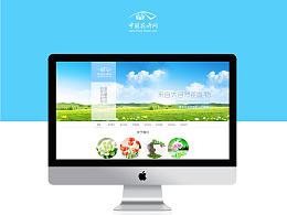 网页改版——中国花卉网