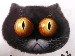 一个猫猫诞生记。(毛毡)