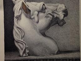 圆珠笔画---《马头》---习作      13cm*13cm