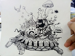 乌龟 大二图形设计作业