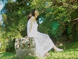 喜欢初夏透着光的树林