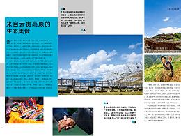 企业内刊杂志设计