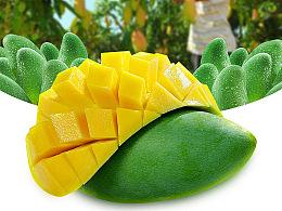 芒果 mango 内页 详情页 海报 平面 广告