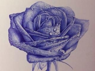 临摹oy的圆珠笔画---蓝色妖姬