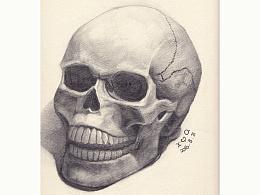 基础素描——头骨/骷颅头