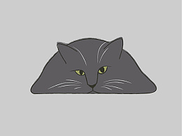 休闲一画 - 猫是液体的吗