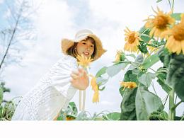 向日葵盛开的夏天
