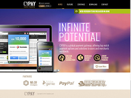 Cypay official website design
