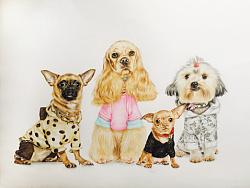 彩铅 狗狗