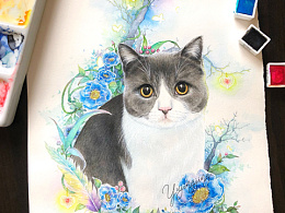 手绘猫咪——英短蓝白