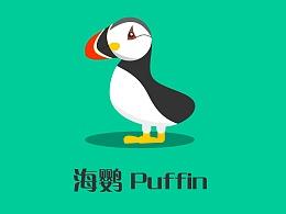 小萌物 海鹦 Puffin