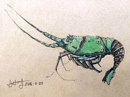 机械时代-大龙虾。