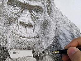 钢笔画习作