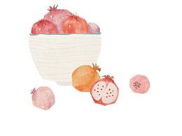 《Fruit》