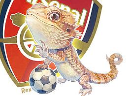【萌宠】霸气蠢萌蜥Rex